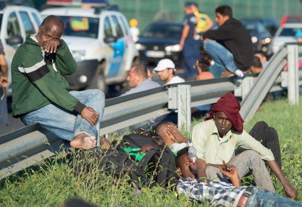 біженці5