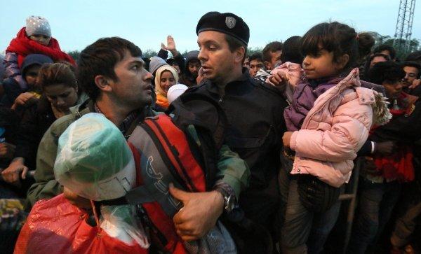 біженці8