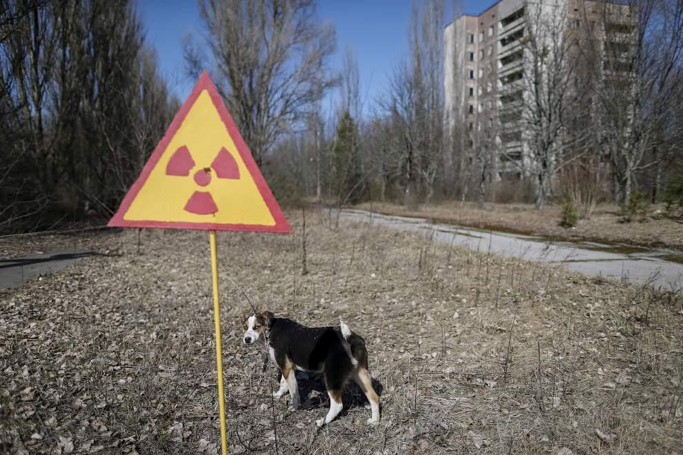 1459841975_chernobyl24