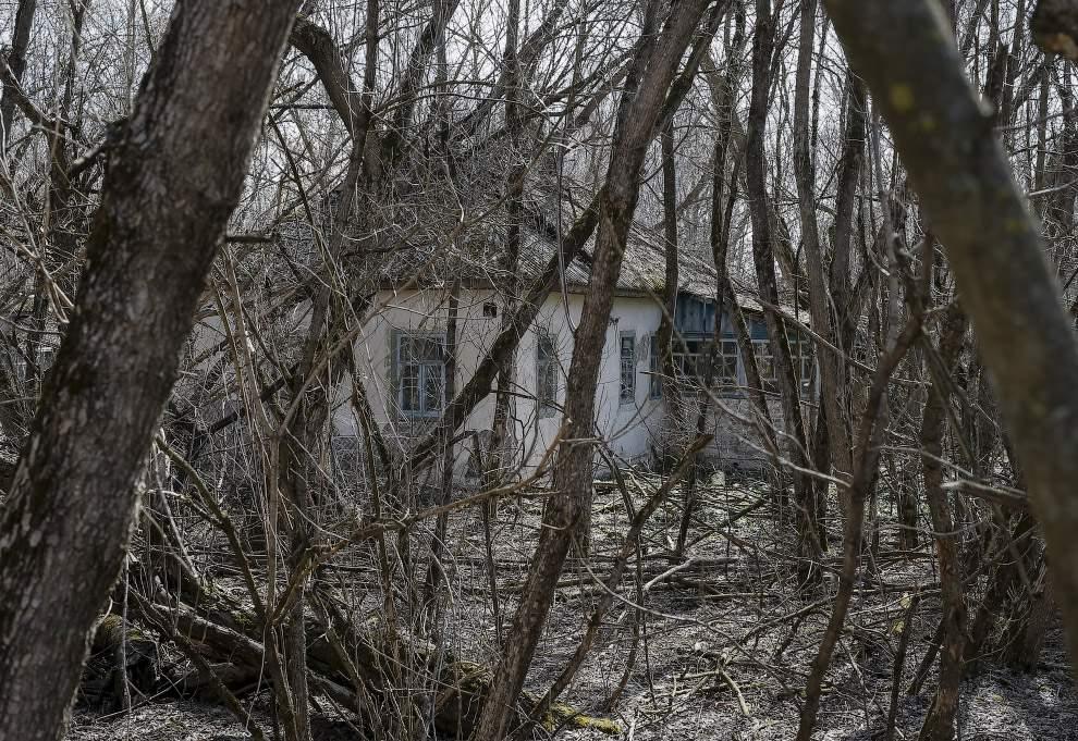 1459842032_chernobyl5