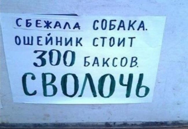 17246960-R3L8T8D-650-8c00840b535814797b0abdac3ff68248