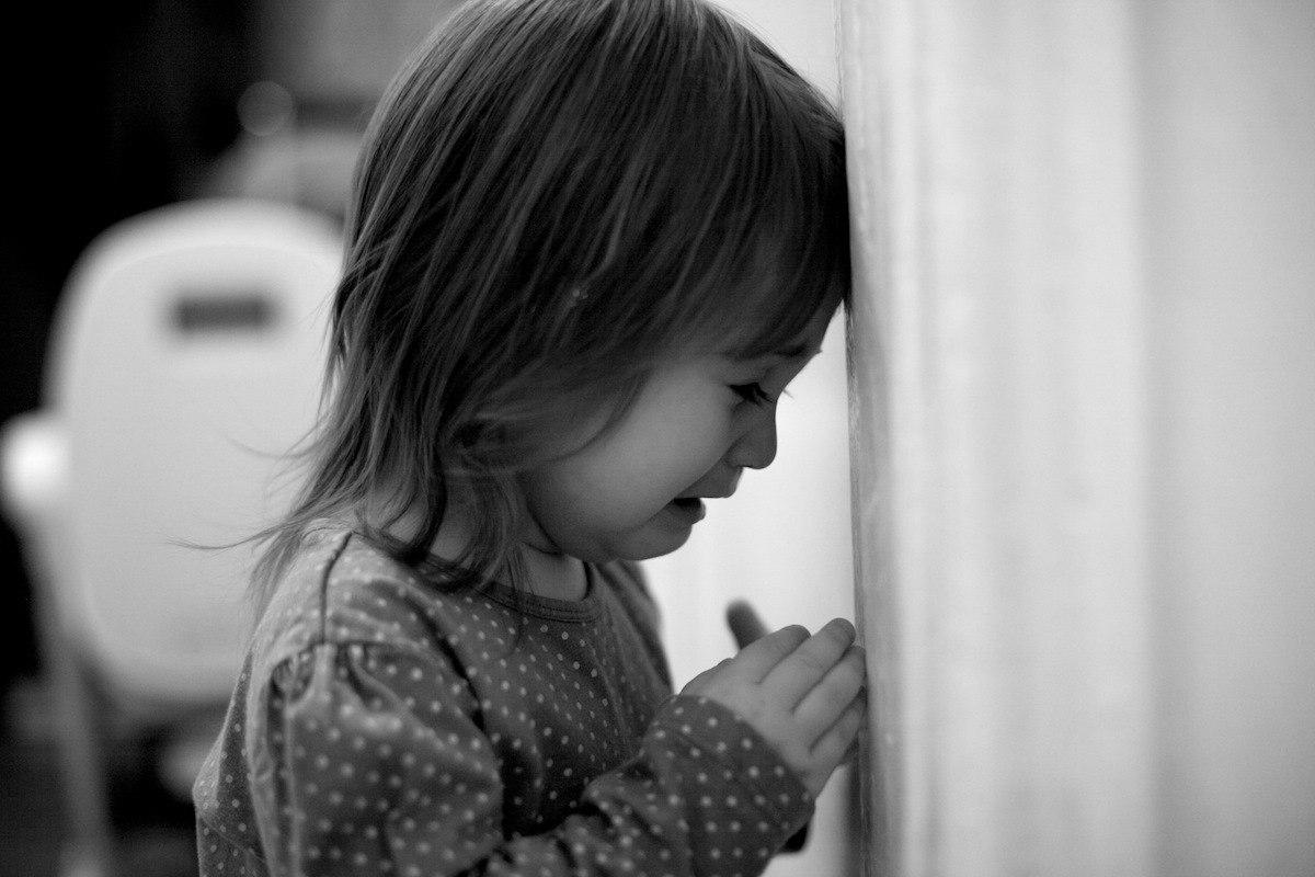 «Вектор» кормит детей Восточного Подмосковья помоями: почему бездействуют власти?