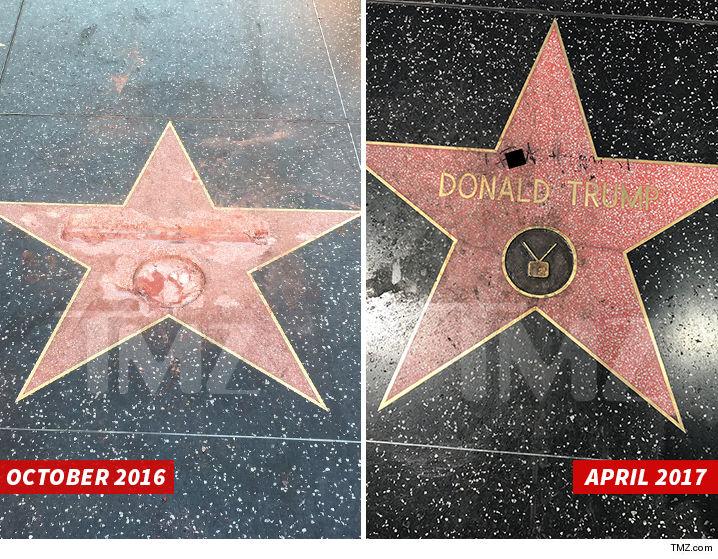 0507-donald-trump-star-vandalized-again-golden-toilet-sub-asset-tmz-4