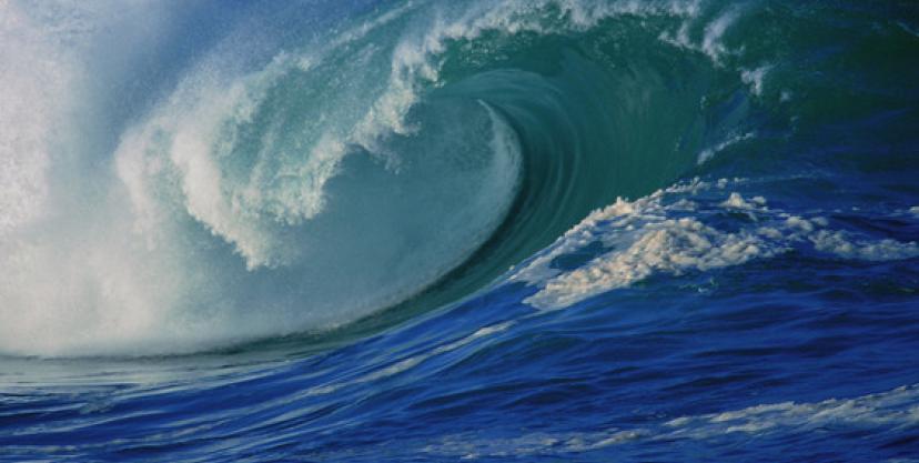 okean_1